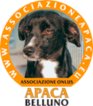 logo APACA