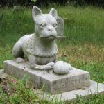 Anche in Veneto, animali domestici seppellibili in giardino