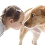 """Cani e gatti sono come """"figli"""" per il 44% degli italiani"""