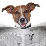 Professioni…da cani: ecco chi fa cosa (Parte III^)